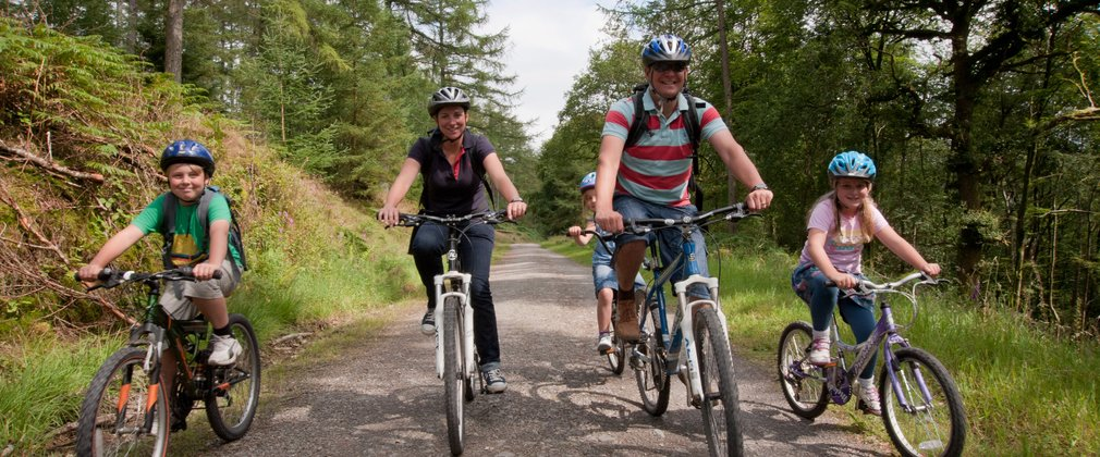 Family Cycling In Sherwood Forest
